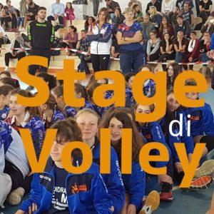 Programma degli Stage organizzati dalla Libera Volley